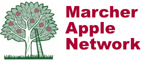 Marcher Apple Network